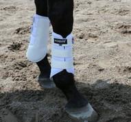 EcoGold Exercise Horse Boots